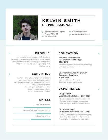 it-professional-experience-resume