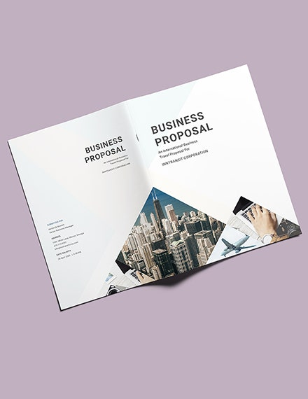 travel business proposal