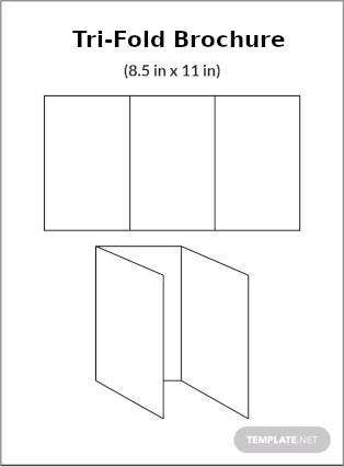 Tri-Fold Brochure Infographic