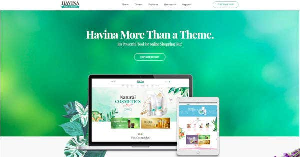 Beauty and Skin Care Webiste Theme