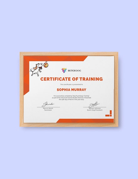 dog training certificate
