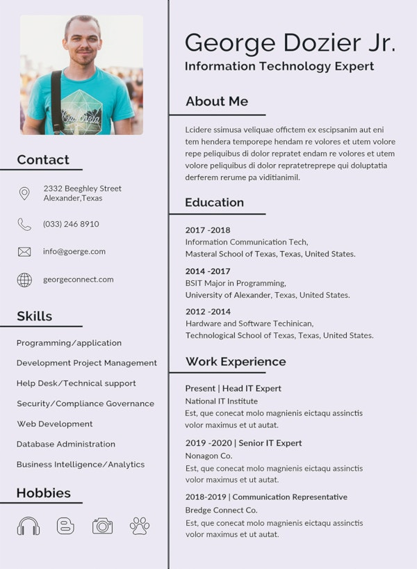 30 Best Resume Formats Doc Pdf Psd Free Premium Templates