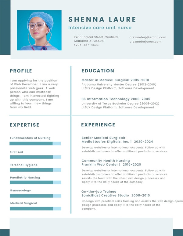 35 Sample CV Templates  PDF
