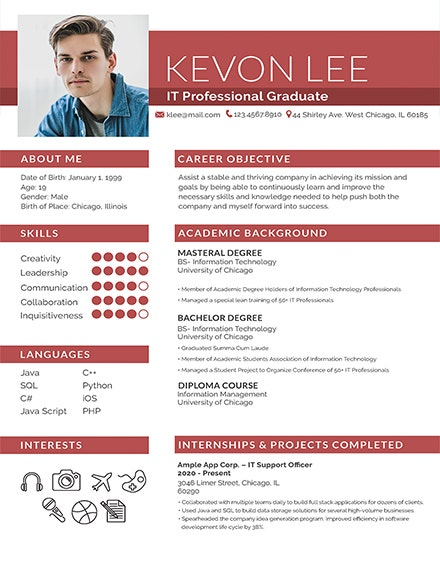 Fresher Professional Resume Template