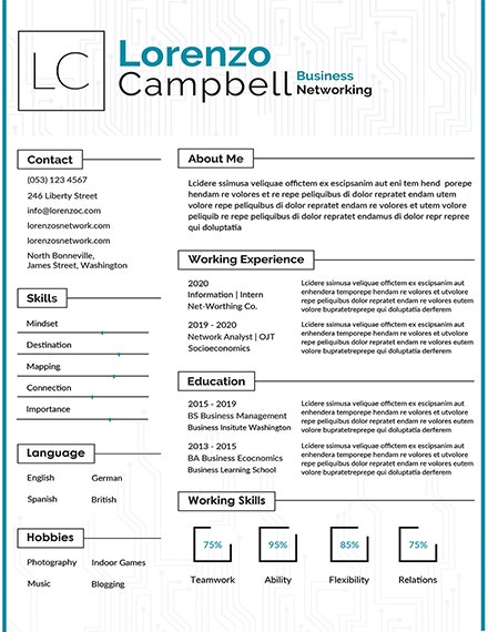 hardware and networking resume template