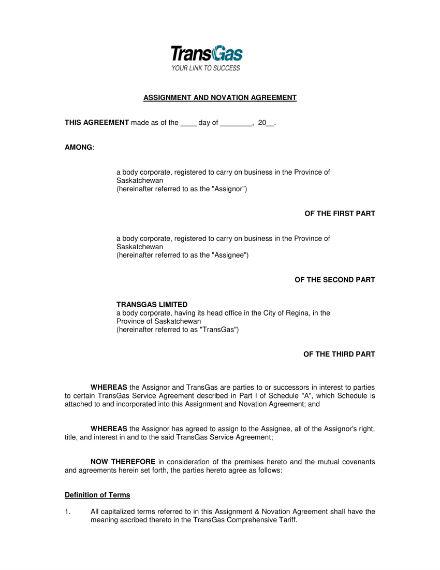 novation and agreement sample