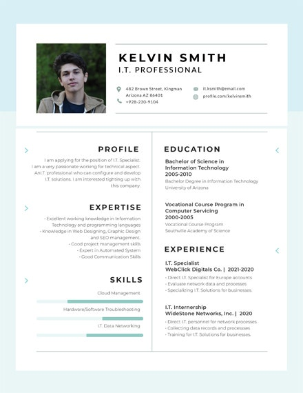 Professional IT Experience Resume Template