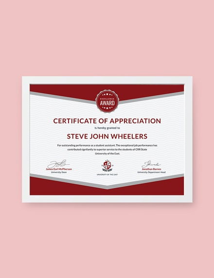student appreciation certificate