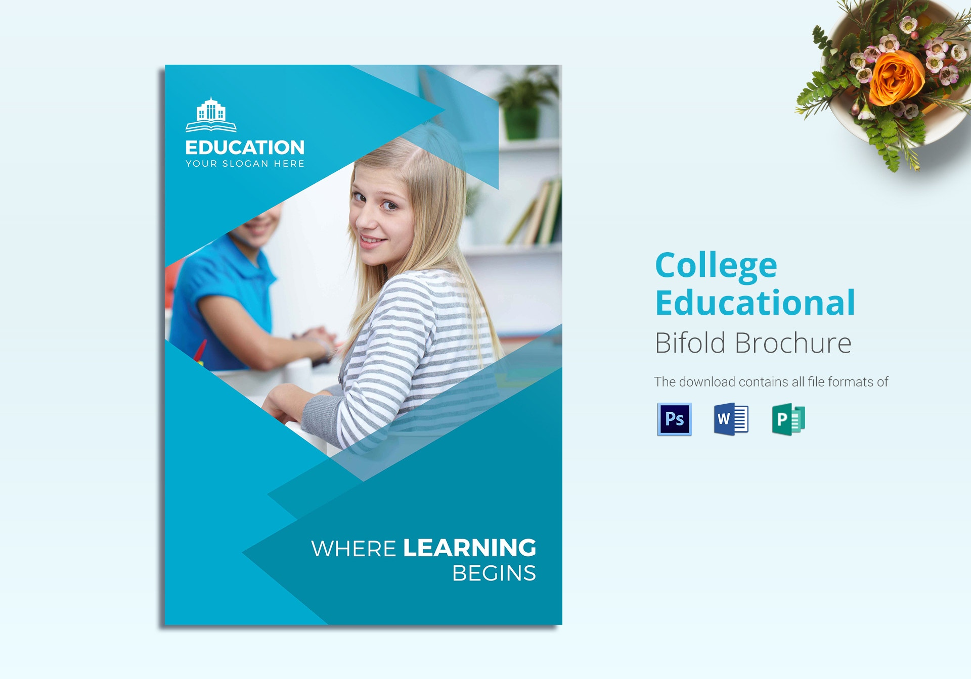college educational bifold brochure template