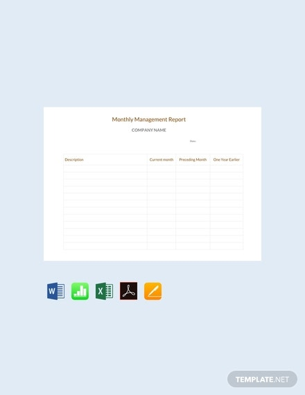 monthly management report sample