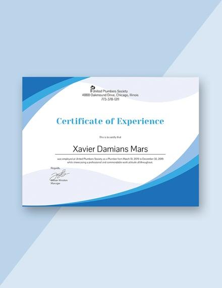 plumbing experience certificate