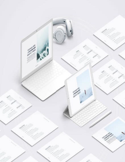 scandinavia portfolio resume