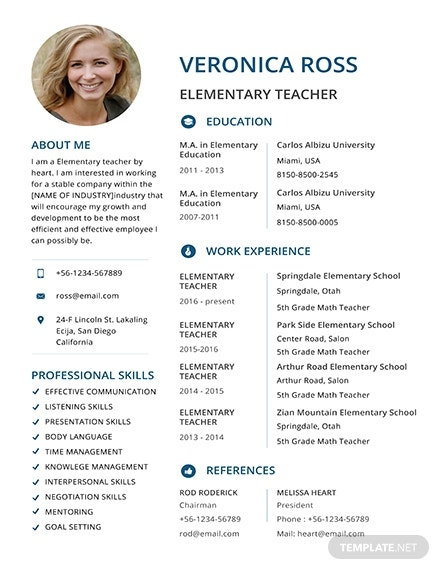 clean resume template 1x