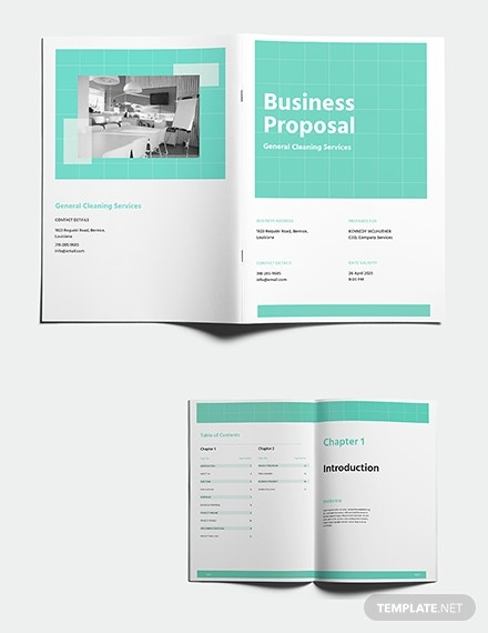 cleaning business proposal template 1 1x