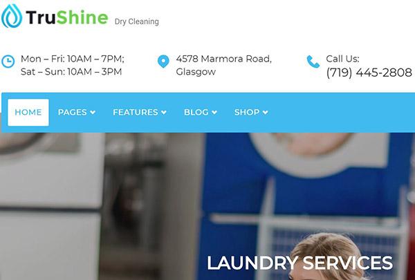 TruShine Laundry – WPML Ready WordPress Theme