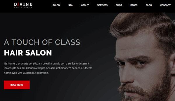 Divine – Professional WordPress Theme