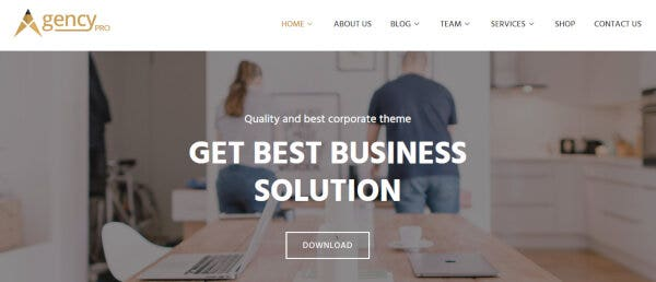 24-10-agency-pro-premium-corporate-wordpress-theme-fw