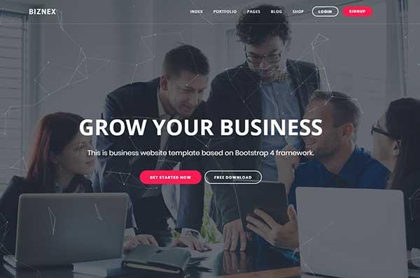 Biznex-Fully Customizable HTML5 business WordPress Theme