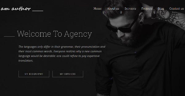 am author highly responsive wordpress theme