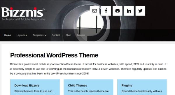bizznis default layout set wordpress theme