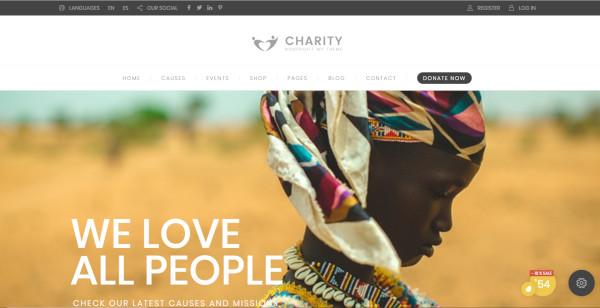 charity-hub-automated-wordpress-theme