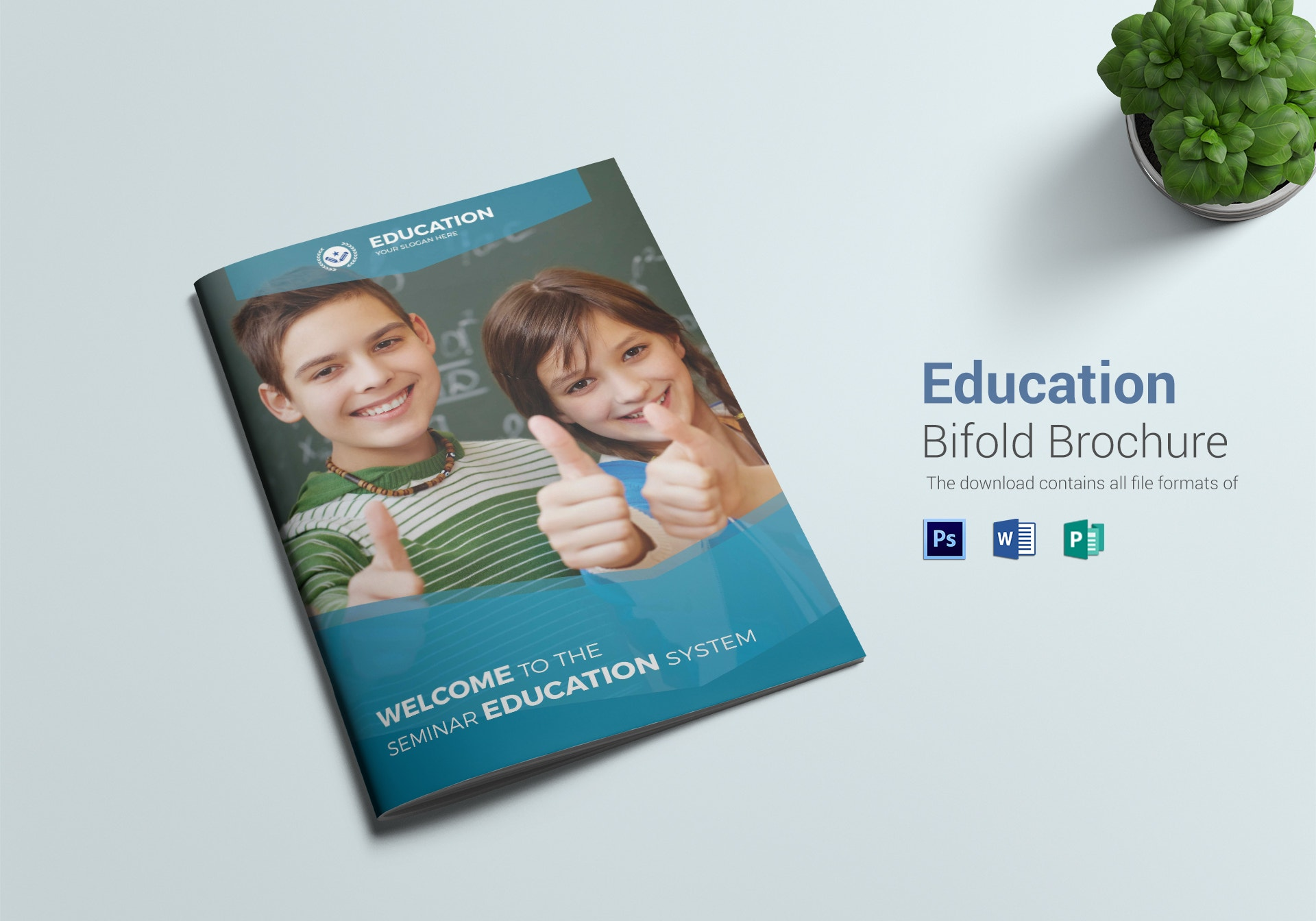 education system bi fold brochure template