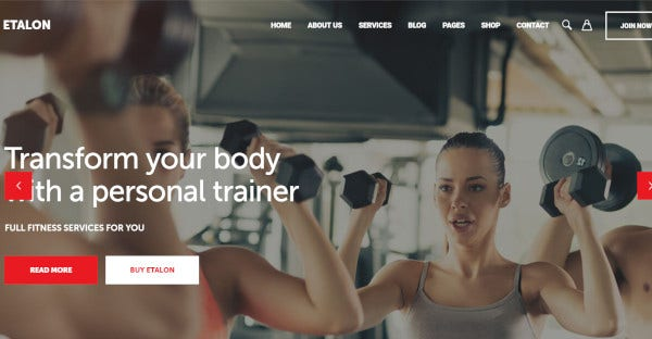 etalon highly customisable fitness theme
