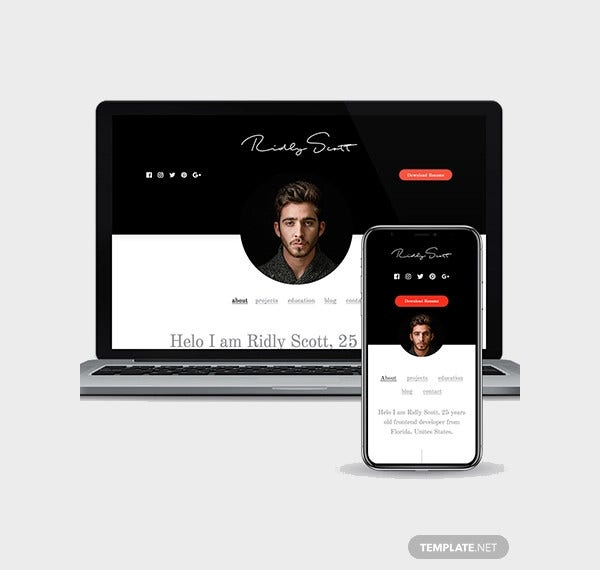free-resume-wordpress-theme-responsive-wordpress-theme