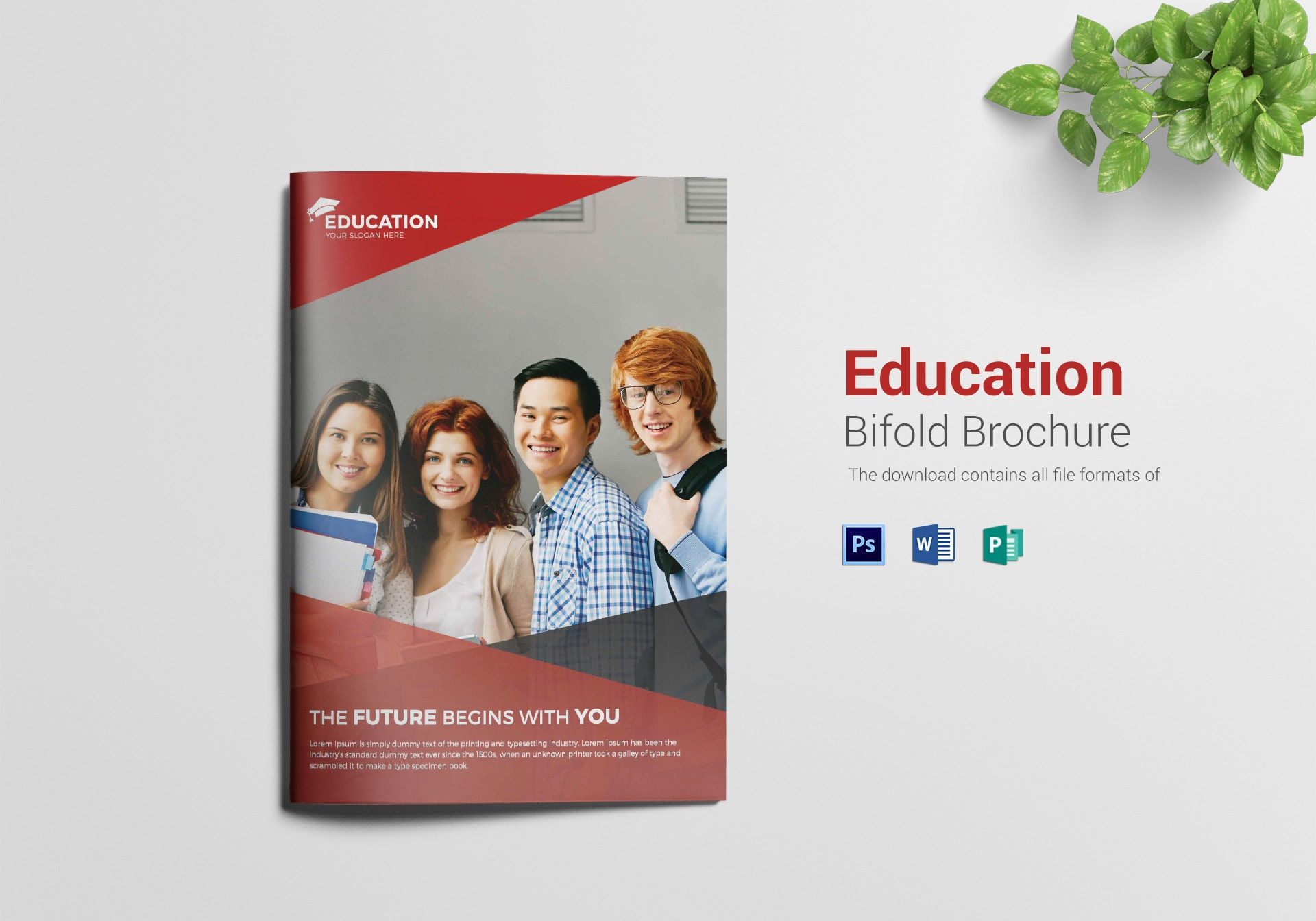 higher educational bi fold brochure sample