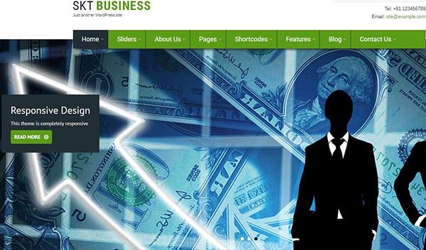 Bizness Pro - Color Picker based WordPress Theme