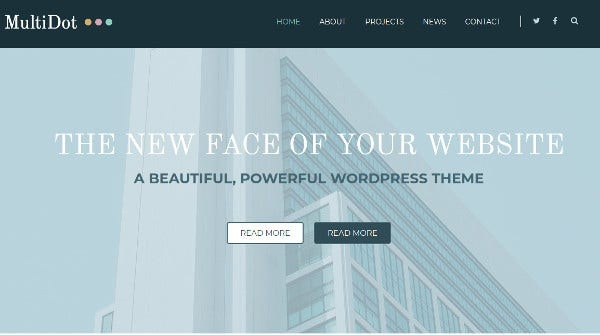 multidot advertising option wordpress theme
