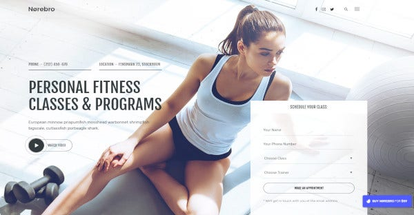 norebro fresh fitness wordpress theme