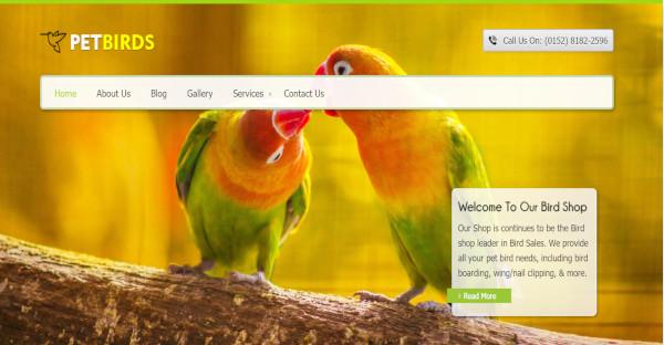 petbirds bird shop wordpress theme
