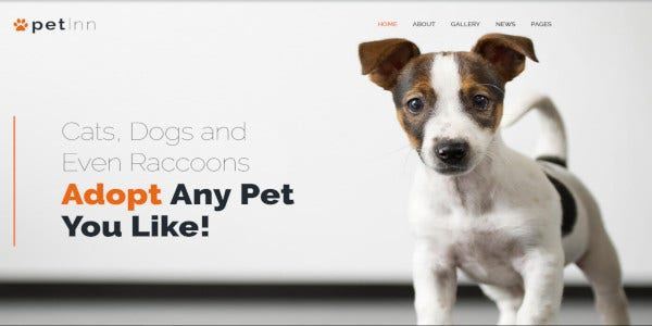 petinn animal shelter responsive wordpress theme