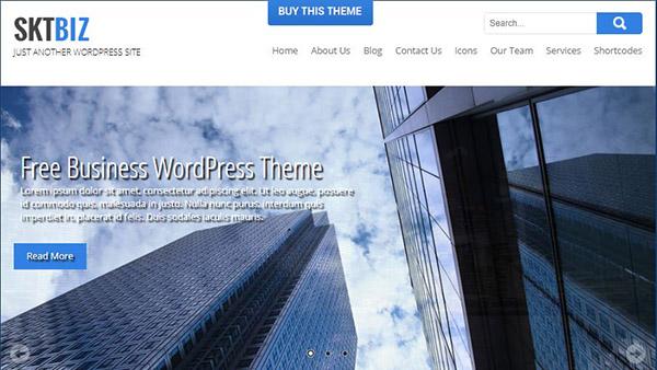 SKT Biz Pro - SEO and SMO friendly WordPress Themes