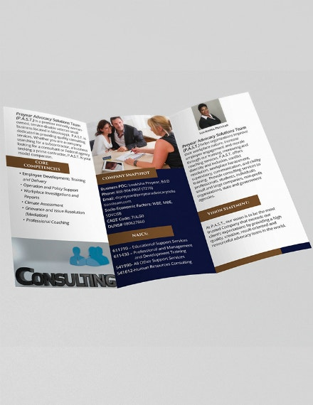 solutions consulting brochure format