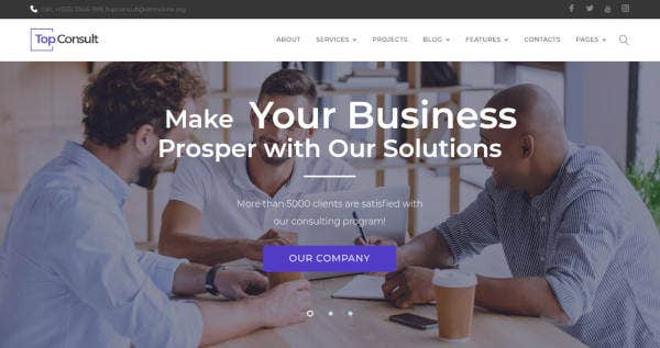 topconsult business consulting theme