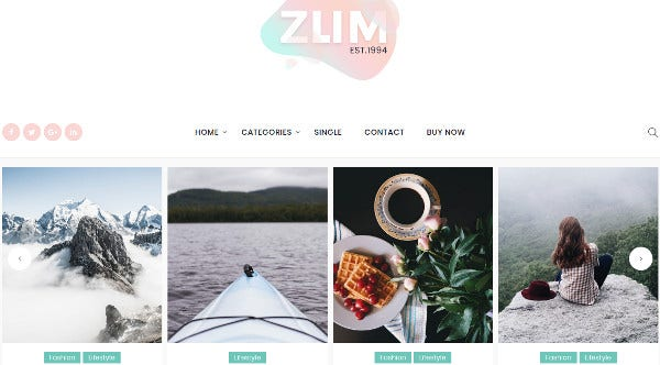 zum retina ready wordpress theme