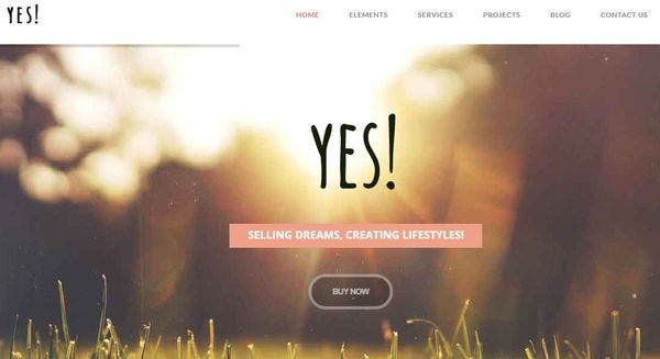 YES -Cross Browser Compatible WordPress Theme