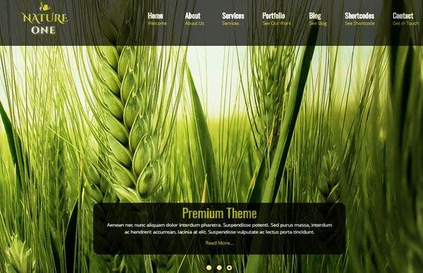 Nature One Pro – Google Mobile Friendly WordPress Theme