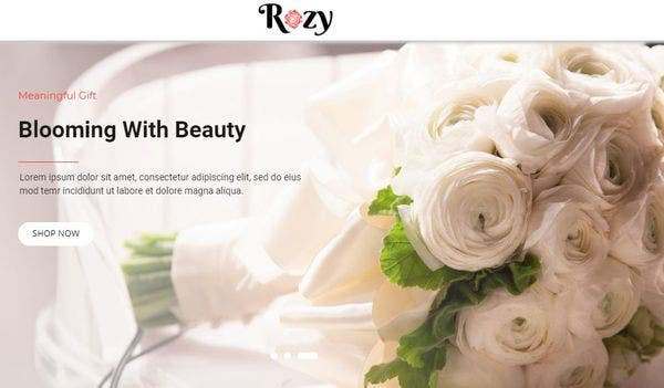 Rozy: Mobile-friendly WordPress Theme
