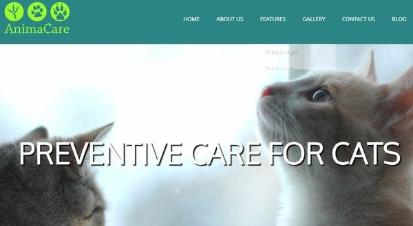 Animacare – WooCommerce Supported WordPress theme
