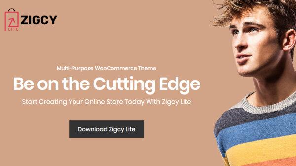 Zigcy lite – Live Customizable WordPress Theme