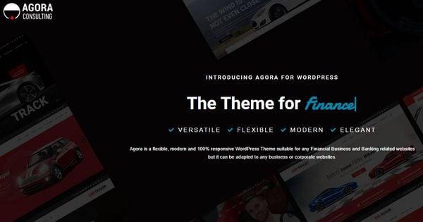 Agora - Video Backgrounds WordPress Theme