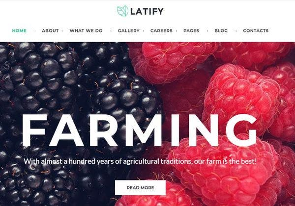 Latify – Fully Documented WordPress Theme