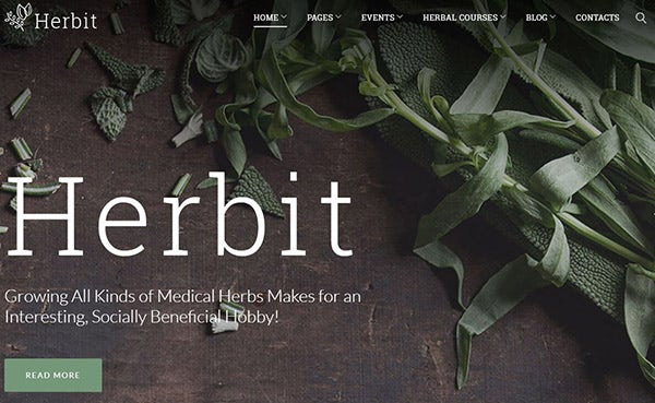 Herbit – Multiple Layout Option WordPress Theme