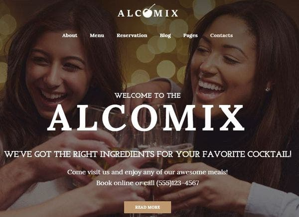 Alcomix – SEO-Optimized WordPress Theme