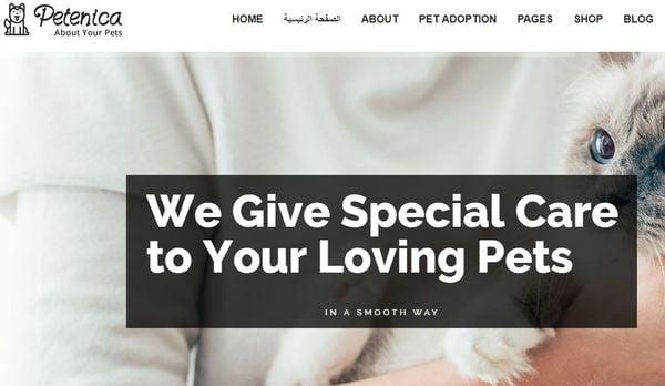 Petenica – Donation Form Integrated WordPress theme