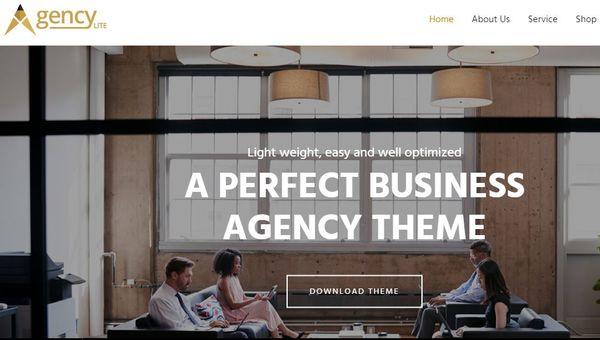 Agency-Lite - WooCommerce Compatible WordPress Theme