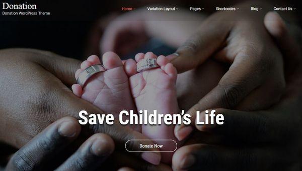 Donation – Widgetized Sidebar WordPress theme